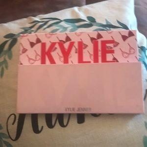 Kylie Jenner 2019 VDAY pallette